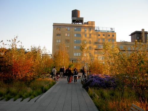 trees and people on the high line